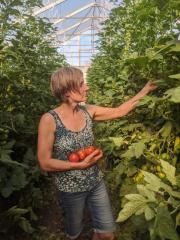 Bubenicek eingelegtes Bio Gemüse